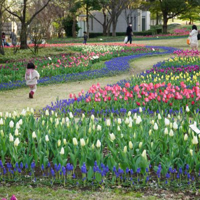 新しい春、変化の春